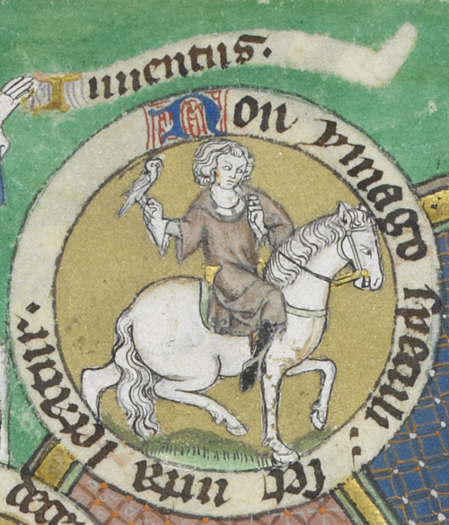 A detail from the De Lisle Psalter, showing an illustration of a mounted figure with a hawk.