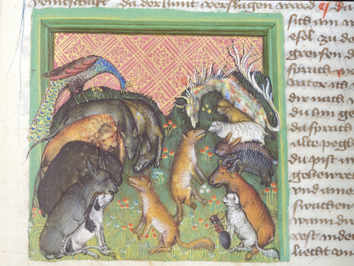 A detail from a 15th-century manuscript, showing an illustration of a fox choosing companions for a pilgrimage from a group of animals.